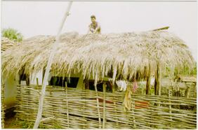 """कोळ्कापोग़ोन ईंदिङ वेसना  Laying """"inding"""" grass on the tiled roof of a shed"""